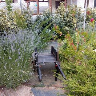 На фото: солнечный, осенний огород на участке среднего размера на заднем дворе в скандинавском стиле с подъездной дорогой, освещенностью и покрытием из каменной брусчатки с