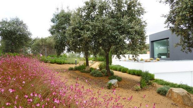 Mediterráneo Jardín by Ángel Méndez Arquitectura + Paisaje