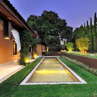 Diseño de jardín francés, tradicional, grande, en patio lateral