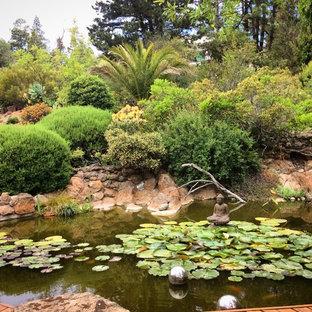 Modelo de jardín francés, actual, en patio trasero, con estanque y entablado