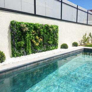 Imagen de jardín actual, pequeño, con jardín vertical, exposición total al sol y adoquines de hormigón