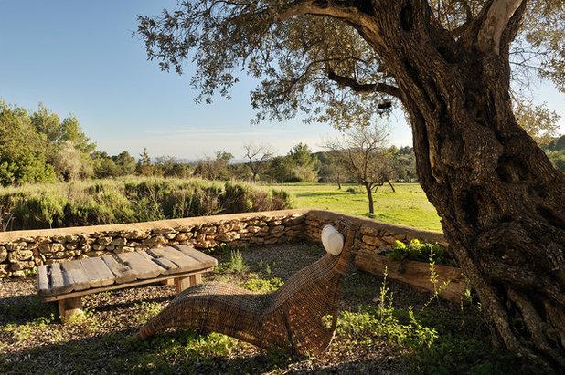 Mediterranean Landscape Mediterráneo Jardín