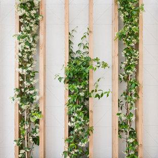 Exemple d'un petit jardin vertical arrière scandinave.