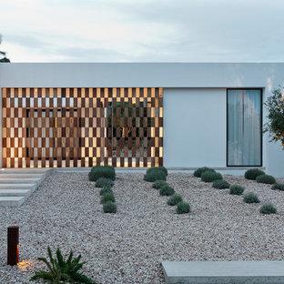 Imagen de jardín minimalista, en patio lateral, con gravilla y exposición total al sol