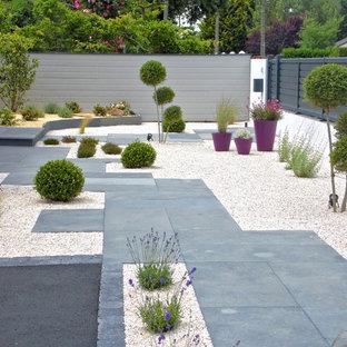 Modern inredning av en stor trädgård i full sol framför huset, med en trädgårdsgång och grus