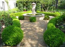 New garden ground cover