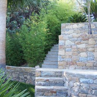 Cette image montre un grand jardin arrière ethnique l'été avec une entrée ou une allée de jardin, une exposition ombragée et des pavés en pierre naturelle.