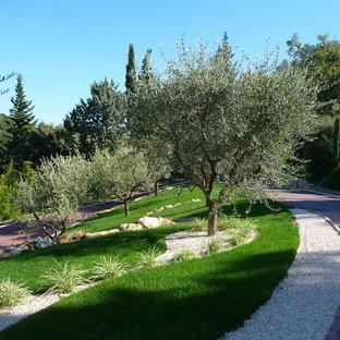 Réalisation d'une grande allée carrossable méditerranéenne avec une entrée ou une allée de jardin et une pente, une colline ou un talus.