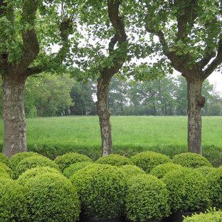 Cette photo montre un jardin arrière chic.