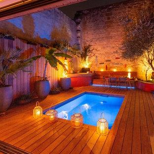 Ispirazione per un piccolo giardino tropicale dietro casa con un giardino in vaso e pedane