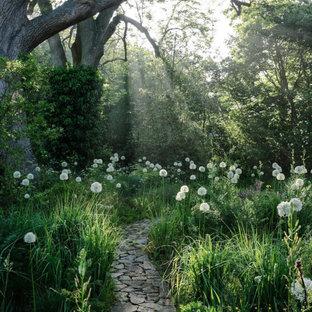 Inspiration pour un jardin traditionnel avec une entrée ou une allée de jardin, une exposition partiellement ombragée et des pavés en pierre naturelle.