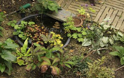 15 astuces pour aménager un bassin dans votre jardin