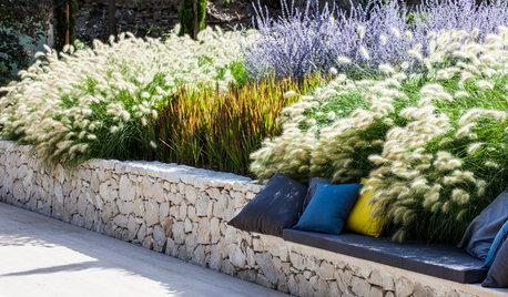 Quelles plantes choisir pour un jardin contemporain ?