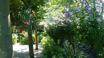 Fleurissement d'un parc
