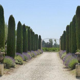 Идея дизайна: большой солнечный, летний участок и сад на переднем дворе в средиземноморском стиле с подъездной дорогой, садовой дорожкой или калиткой, хорошей освещенностью и покрытием из гравия