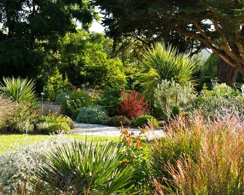 Best coastal garden design ideas remodel pictures houzz for Jardin 00 garden