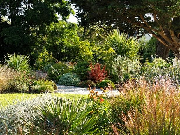 Visite priv e jardin breton entre prairie sauvage et v g taux dompt s - Jardin de bord de mer ...