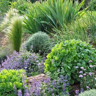 Réalisation d'un jardin style shabby chic de taille moyenne avec une pente, une colline ou un talus.