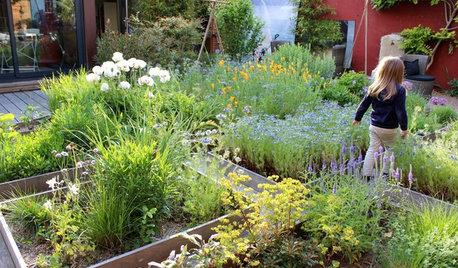 Prato Didattico: Un Angolo Verde Sicuro per Scoprire la Natura