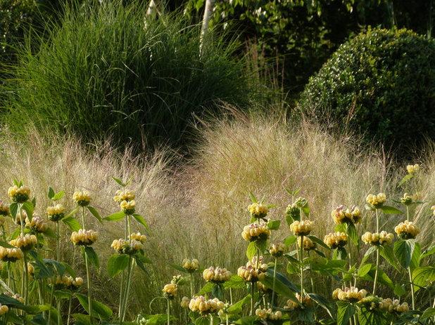 Klassisch modern Garten by Landscapes & Cie