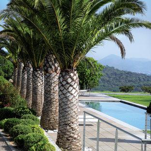 Idéer för mycket stora tropiska trädgårdar i full sol, med en trädgårdsgång