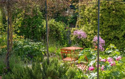 Que faire dans son jardin au mois de juin ?