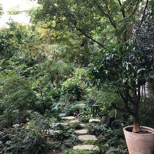 Cette photo montre un jardin avec une terrasse en bois ou composite arrière chic avec une entrée ou une allée de jardin.