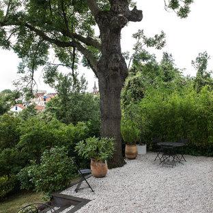 Inspiration pour un petit jardin arrière design avec du gravier.