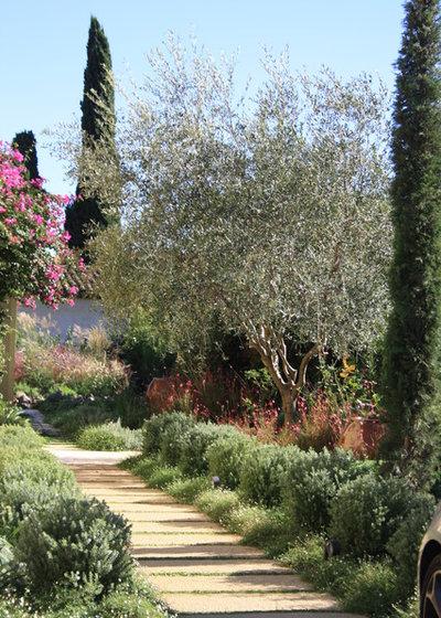 Mediterranean Garden by Riviera Gardens