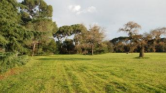 Parc paysager public du XIXe siècle : Régénération