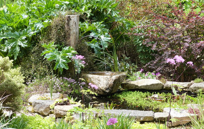 18 types de point d'eau pour sublimer son jardin