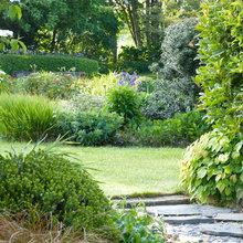 Giardini, piscine, alberi