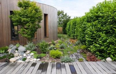 Avant/Après : La métamorphose d'un jardin sublime une extension