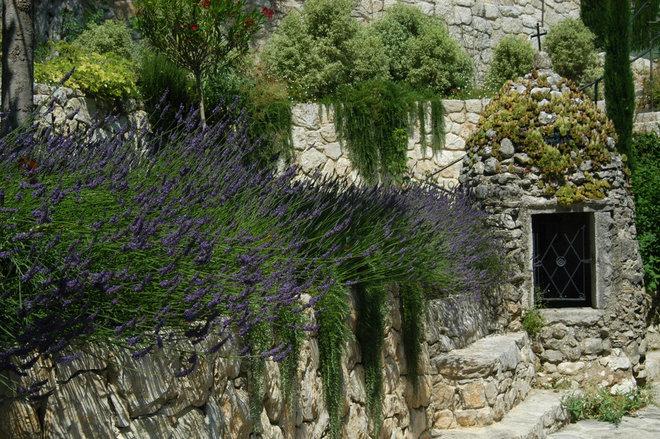 Mediterráneo Jardín by Atelier Nelumbo Garden Design