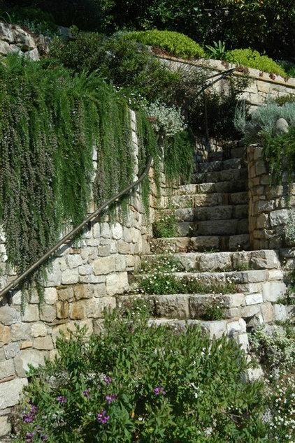 Mediterranean Landscape by Atelier Nelumbo Garden Design