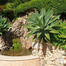 Mediterranean Exterior by Atelier Nelumbo Garden Design