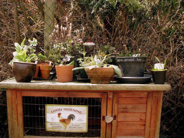 le jardin de patricia poussez les portes du jardin. Black Bedroom Furniture Sets. Home Design Ideas