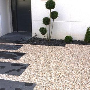 Réalisation d'un jardin avant design avec une entrée ou une allée de jardin, une exposition ombragée et du gravier.