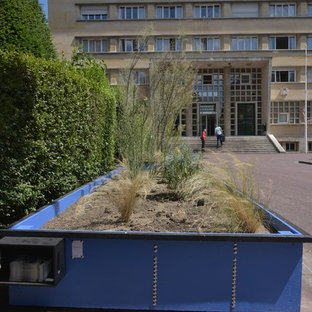 This is an example of a small mediterranean full sun courtyard landscaping in Paris.