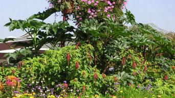 Utilisation de mélanges de fleurs : la ville de MARLY (57)