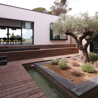 Garten mit Kübelpflanzen in Frankreich - Ideen für die ...