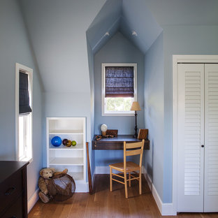 Kids' room - traditional boy medium tone wood floor kids' room idea in San Francisco with blue walls