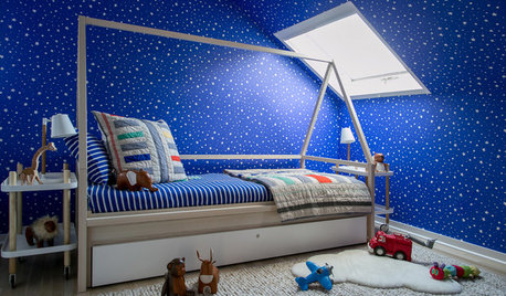 Data Watch: Nature Themes and Blue Are Favorites in Kids' Rooms