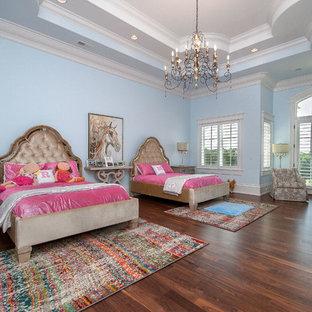 Esempio di un'ampia cameretta per bambini tradizionale con pareti blu e pavimento in legno massello medio