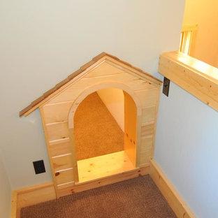 Ispirazione per una piccola cameretta per bambini da 4 a 10 anni american style con pareti blu, moquette e pavimento marrone