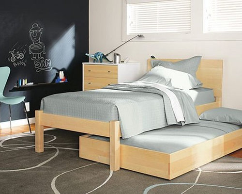 Modern Pull Out Bed Home Design Photos Decor Ideas