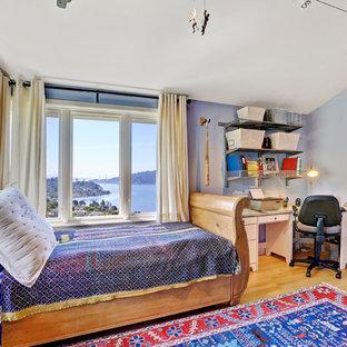 Ispirazione per una cameretta per bambini da 4 a 10 anni classica con pareti viola e parquet chiaro