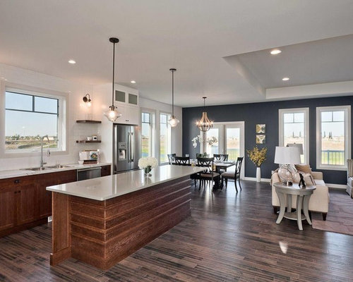 Navy Accent Wall Home Design Ideas, Pictures, Remodel and Decor