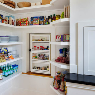 Traditional kitchen pantry inspiration - Kitchen pantry - traditional medium tone wood floor kitchen pantry idea in Boston with open cabinets, white cabinets and granite countertops