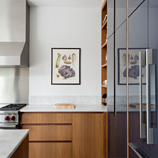 Inspiration for a modern l-shaped kitchen pantry in Toronto with an undermount sink, open cabinets, blue cabinets, panelled appliances, with island and multi-coloured benchtop.